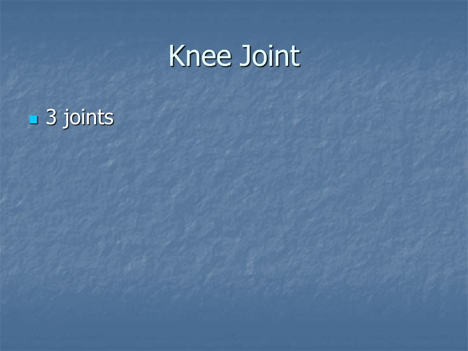 Knee Joint 3 joints