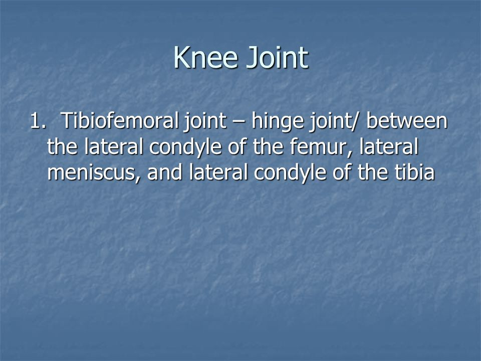 Knee Joint 1.