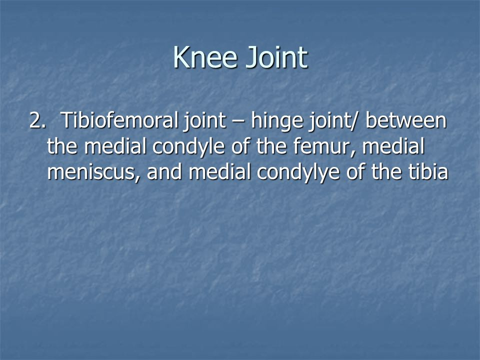 Knee Joint 2.