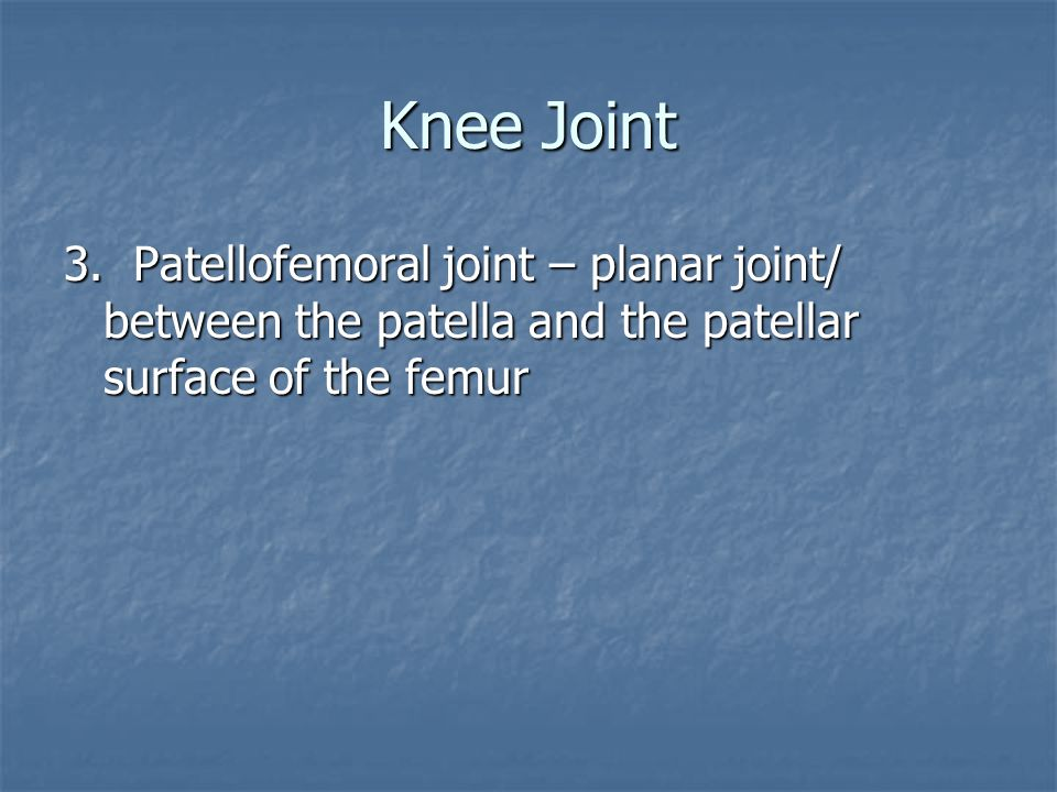 Knee Joint 3.