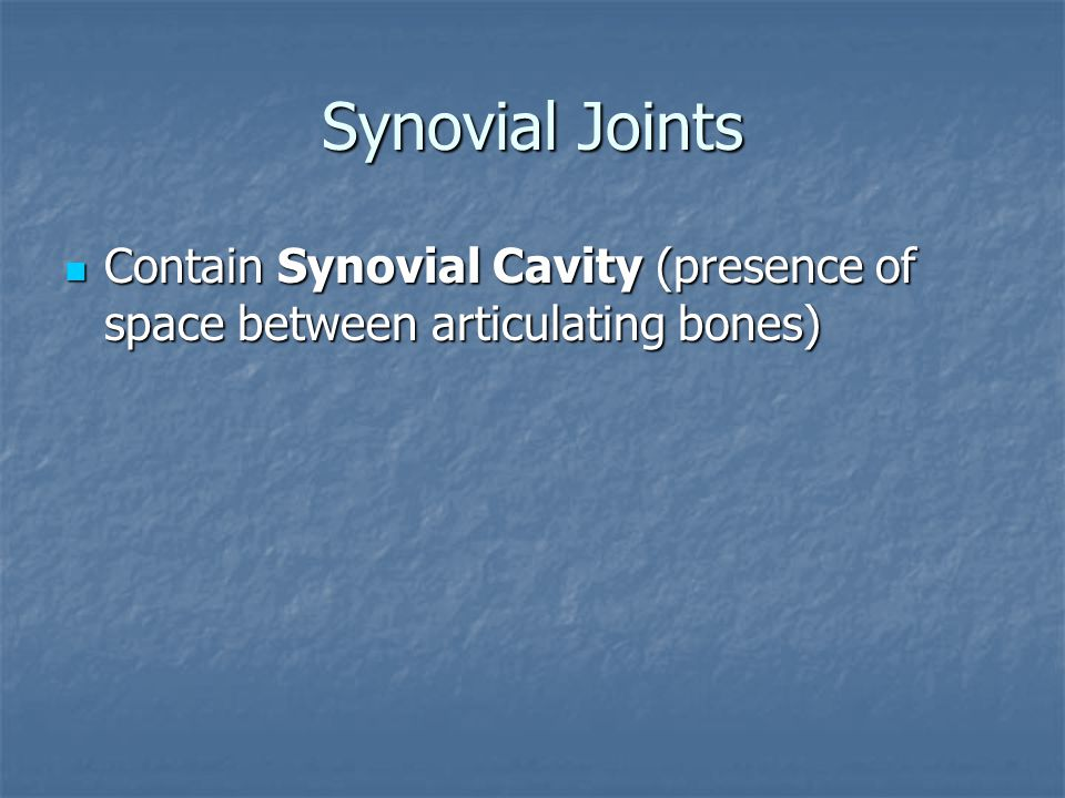 Synovial Joints Contain Synovial Cavity (presence of space between articulating bones)