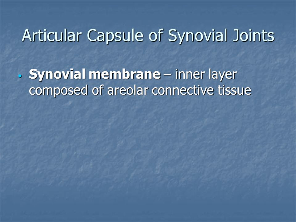 Articular Capsule of Synovial Joints