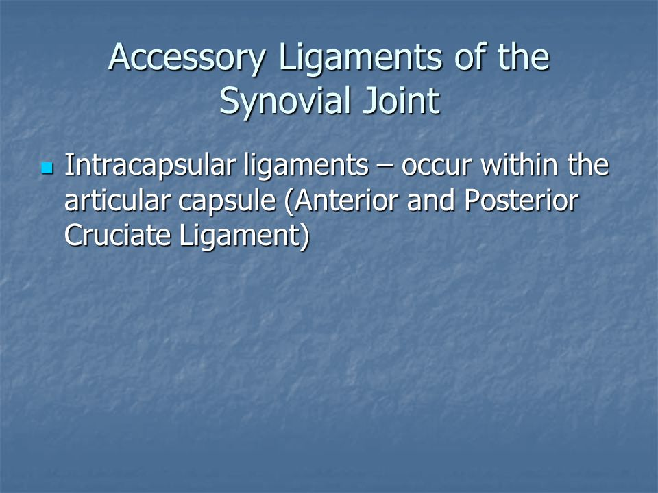 Accessory Ligaments of the Synovial Joint