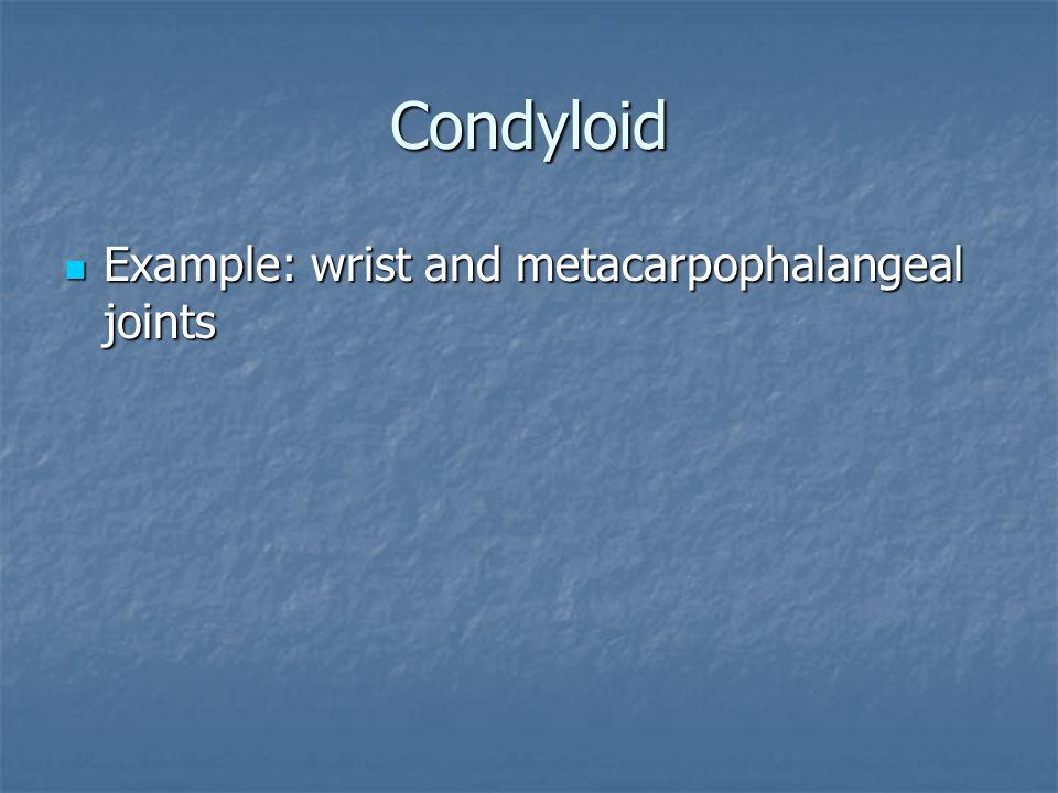 Condyloid Example: wrist and metacarpophalangeal joints