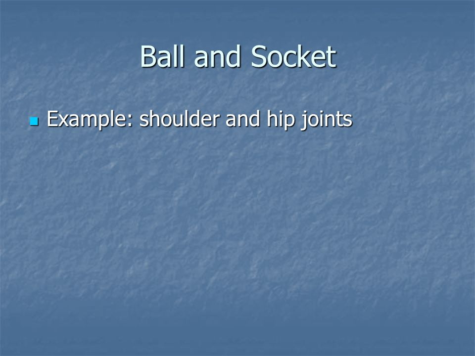 Ball and Socket Example: shoulder and hip joints