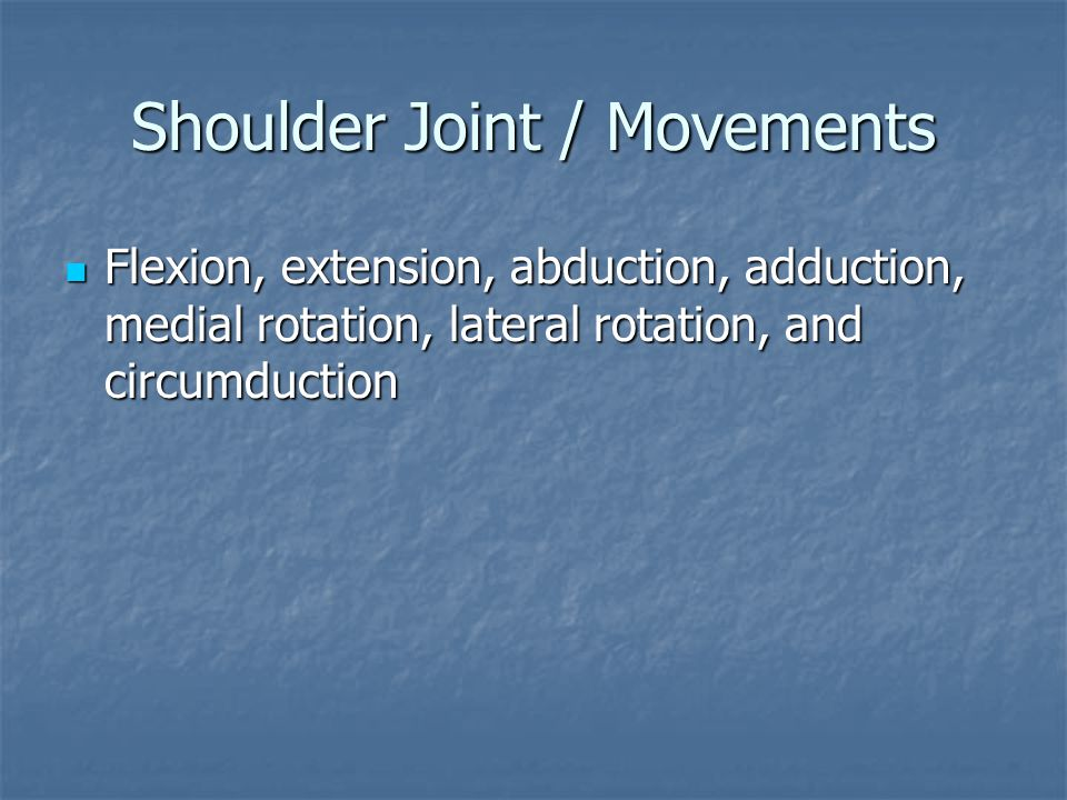 Shoulder Joint / Movements