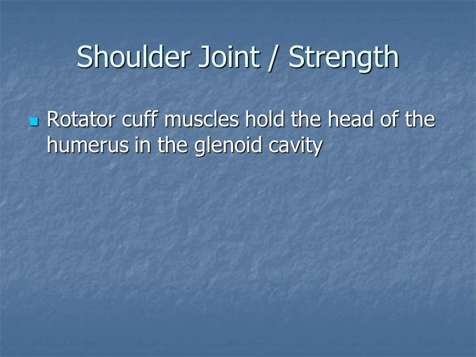 Shoulder Joint / Strength