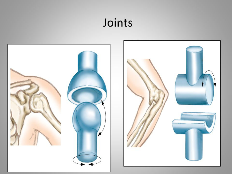 Joints Note that images are missing. Will any text accompany the images