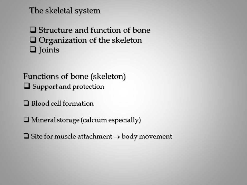 Structure and function of bone Organization of the skeleton Joints