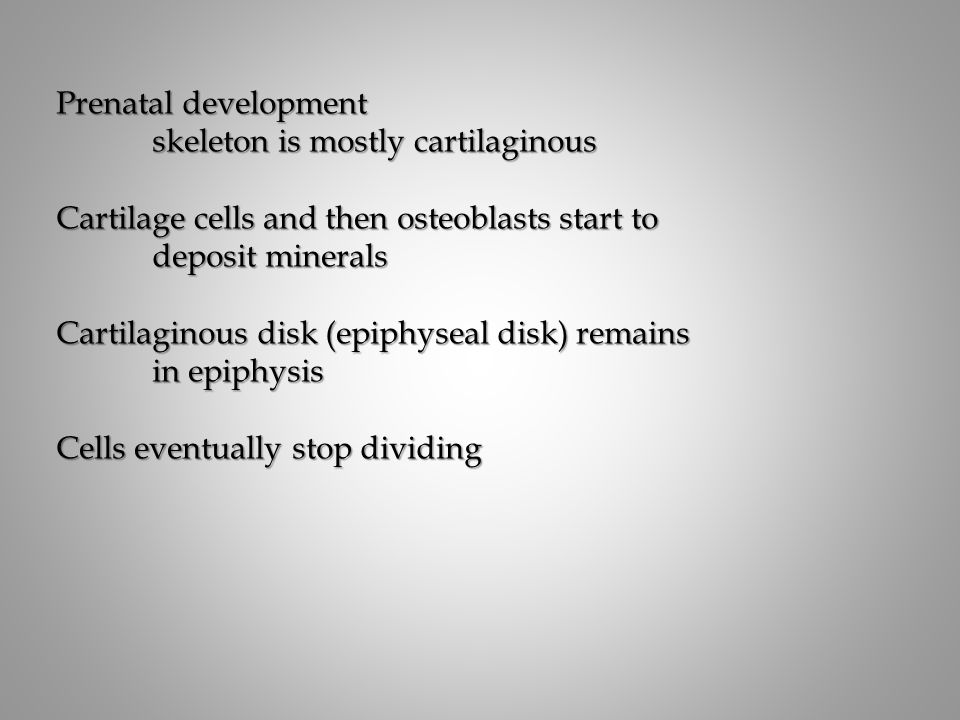 Prenatal development skeleton is mostly cartilaginous. Cartilage cells and then osteoblasts start to.