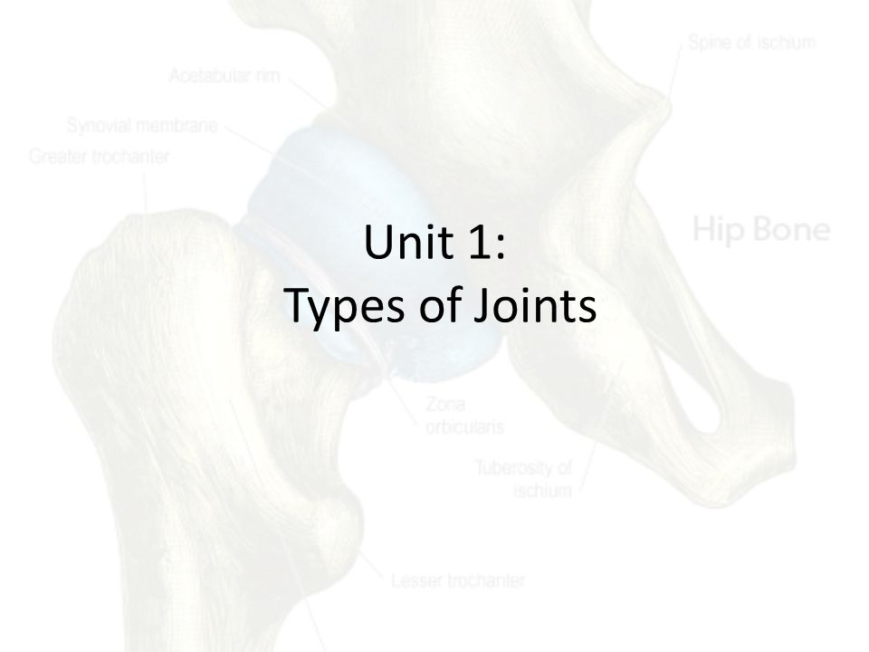 Unit 1: Types of Joints