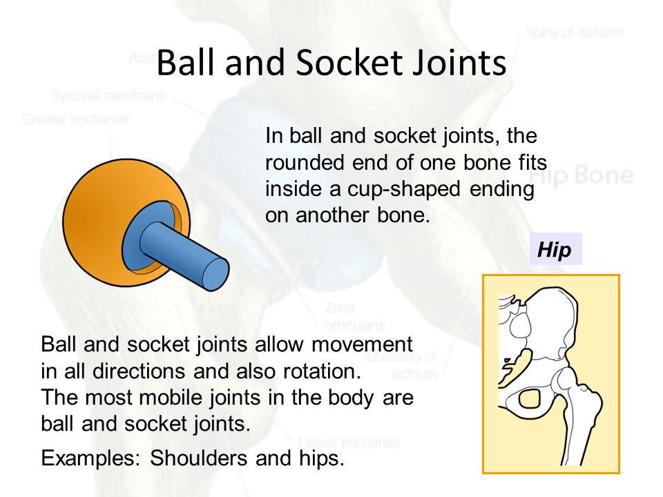 Unit 1: Types of Joints. - ppt video online download