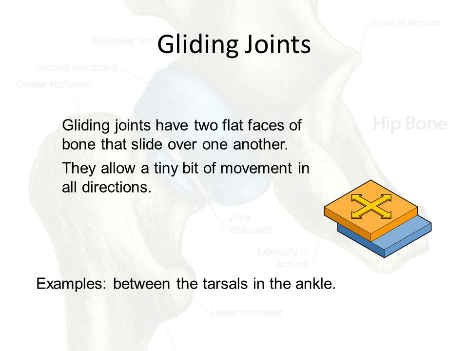 Gliding Joints Gliding joints have two flat faces of bone that slide over one another. They allow a tiny bit of movement in all directions.