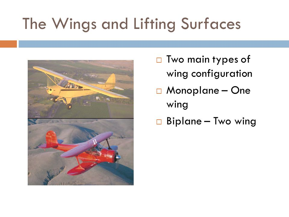 The Wings and Lifting Surfaces