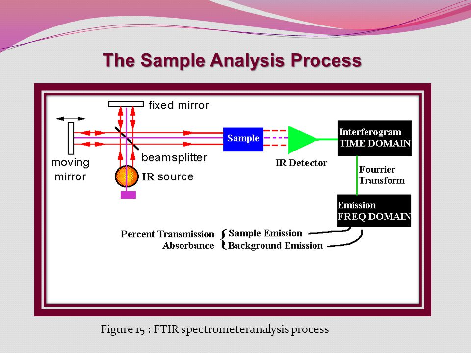 The Sample Analysis Process