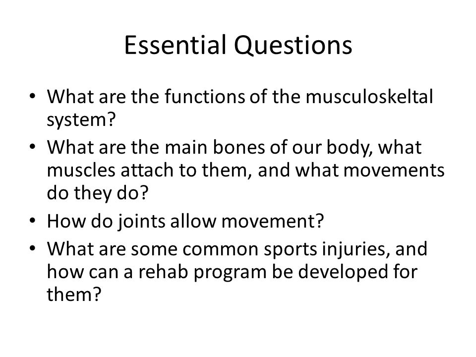 Essential Questions What are the functions of the musculoskeltal system