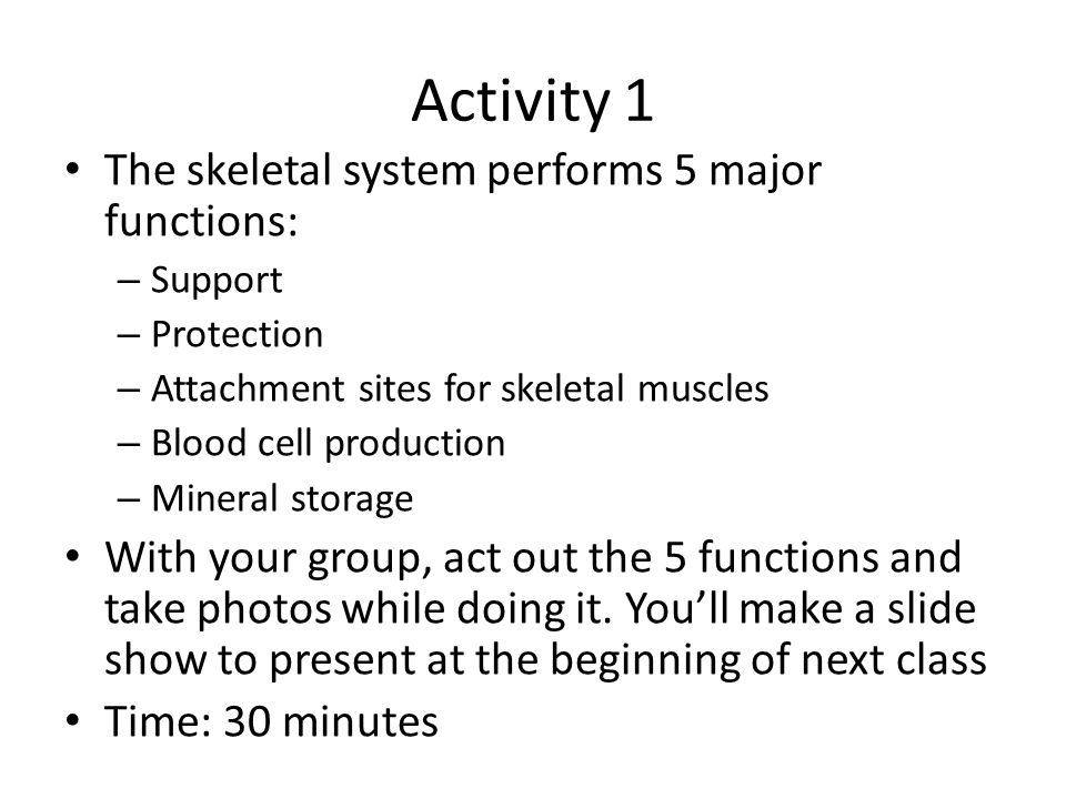 Activity 1 The skeletal system performs 5 major functions: