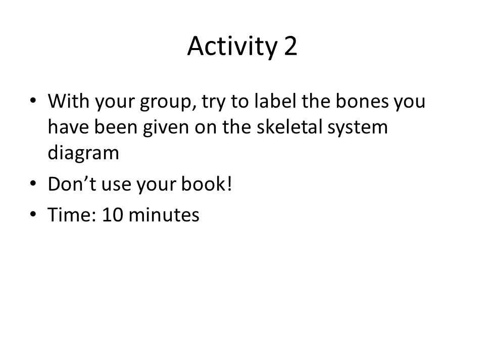 Activity 2 With your group, try to label the bones you have been given on the skeletal system diagram.