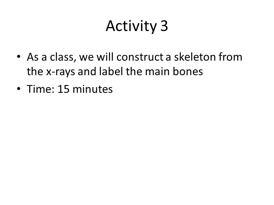 Activity 3 As a class, we will construct a skeleton from the x-rays and label the main bones.