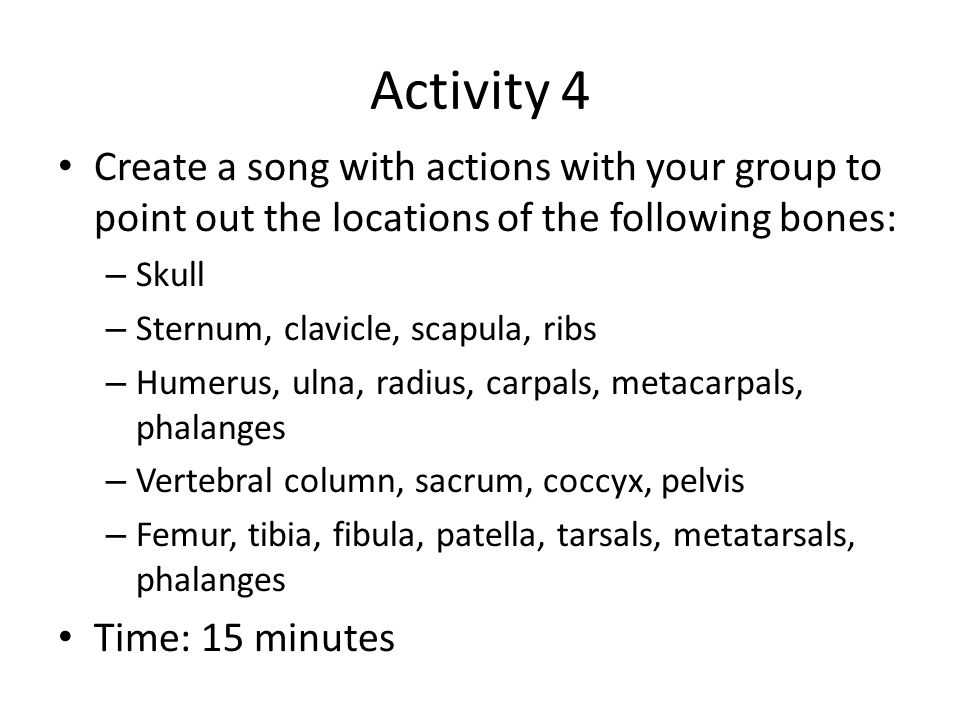Activity 4 Create a song with actions with your group to point out the locations of the following bones: