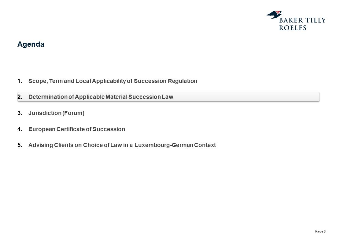 Agenda Scope, Term and Local Applicability of Succession Regulation