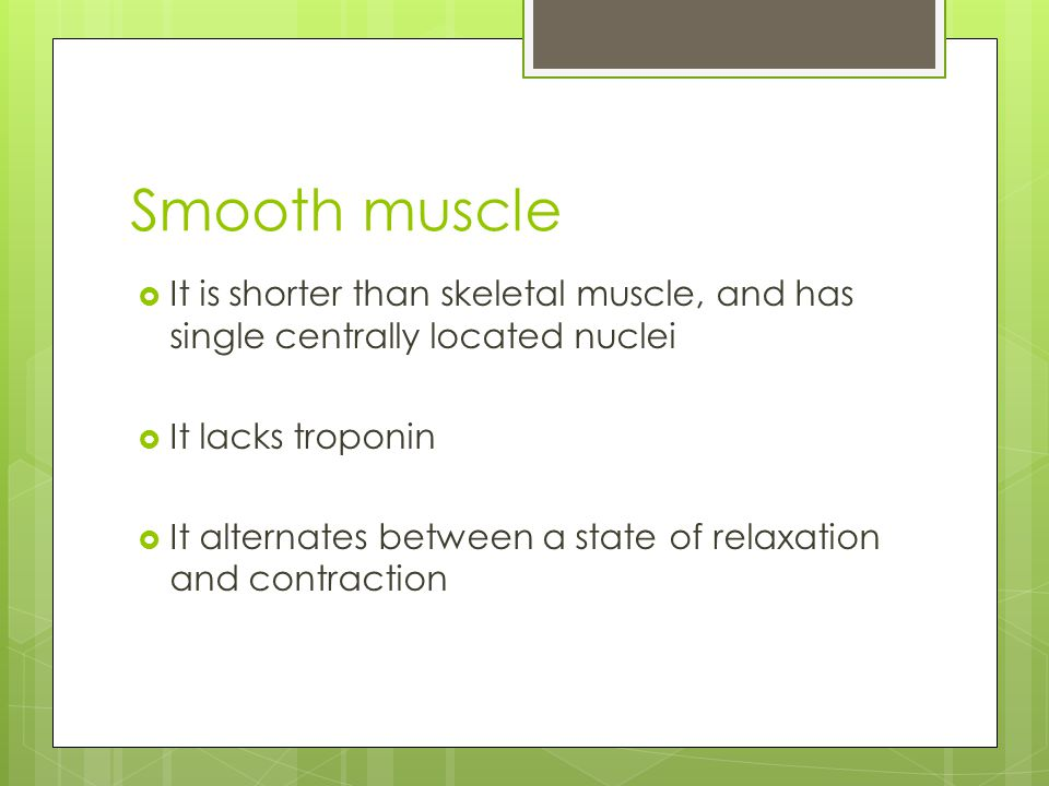 Smooth muscle It is shorter than skeletal muscle, and has single centrally located nuclei. It lacks troponin.