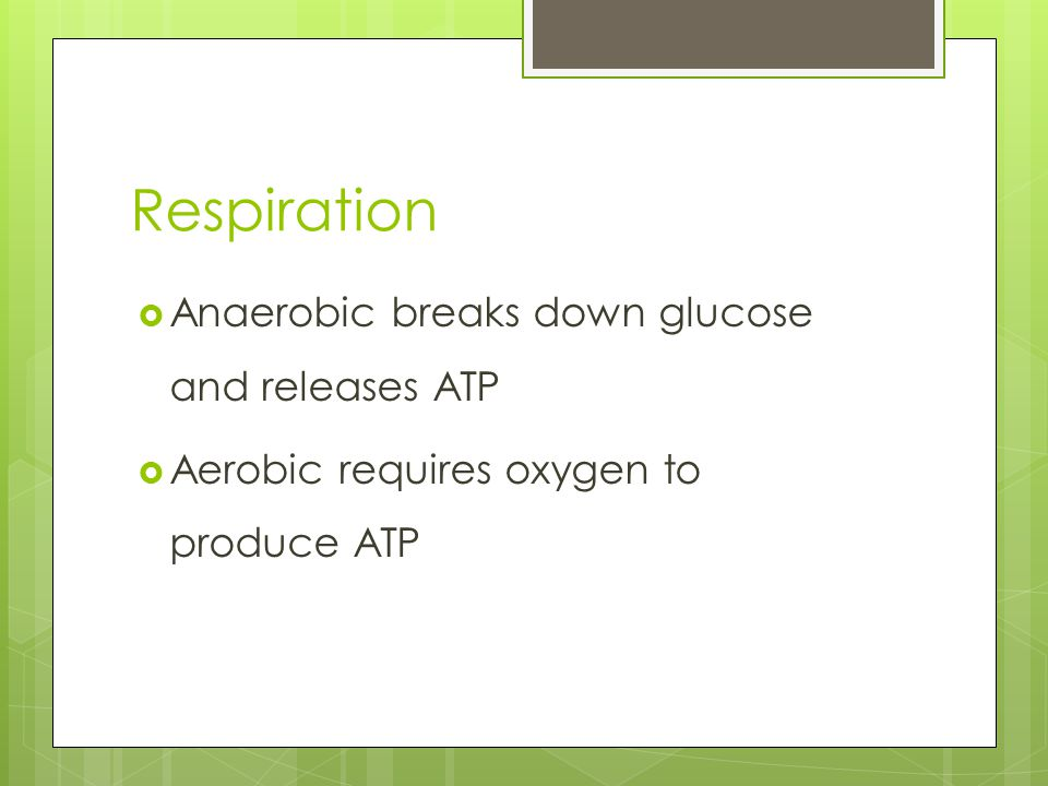 Respiration Anaerobic breaks down glucose and releases ATP
