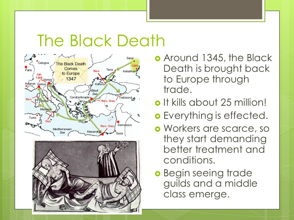 The Black Death Around 1345, the Black Death is brought back to Europe through trade. It kills about 25 million!