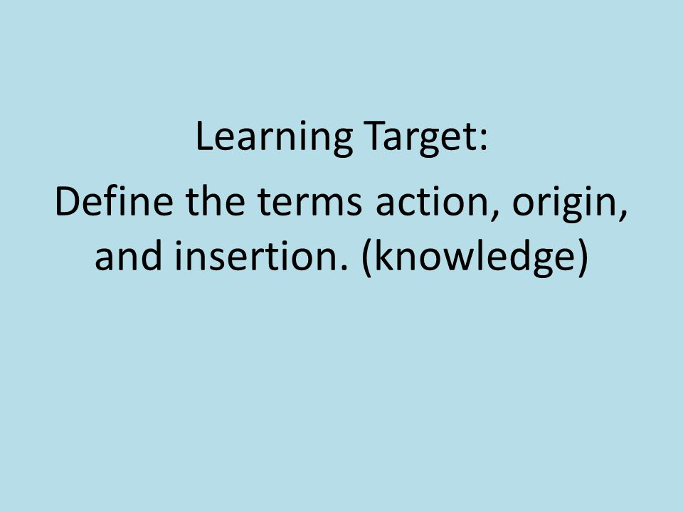 Learning Target: Define the terms action, origin, and insertion