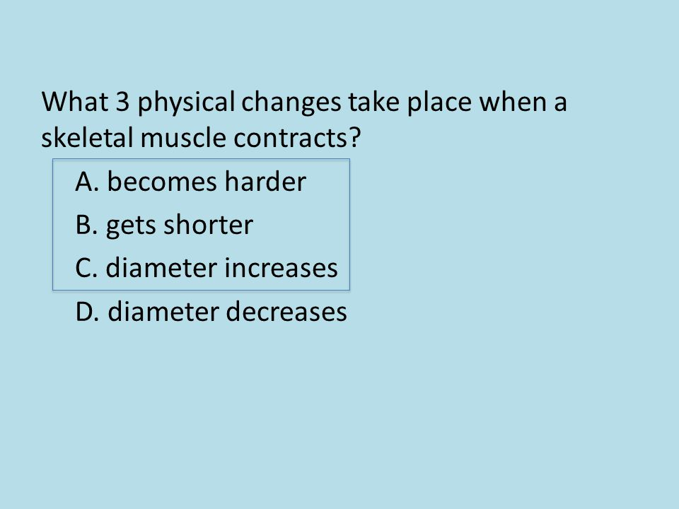 What 3 physical changes take place when a skeletal muscle contracts. A