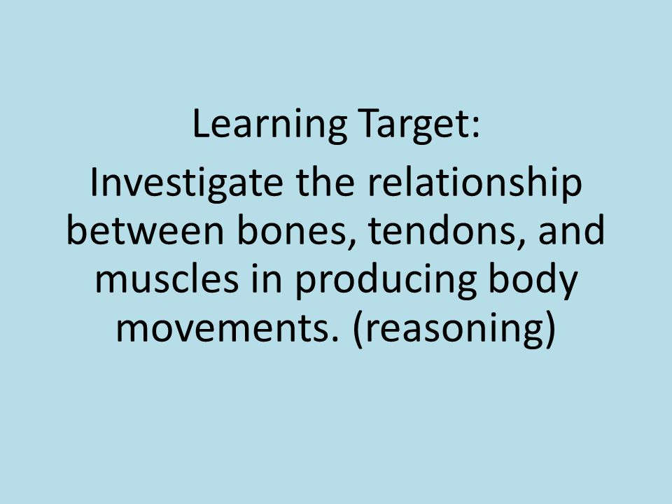 Learning Target: Investigate the relationship between bones, tendons, and muscles in producing body movements.