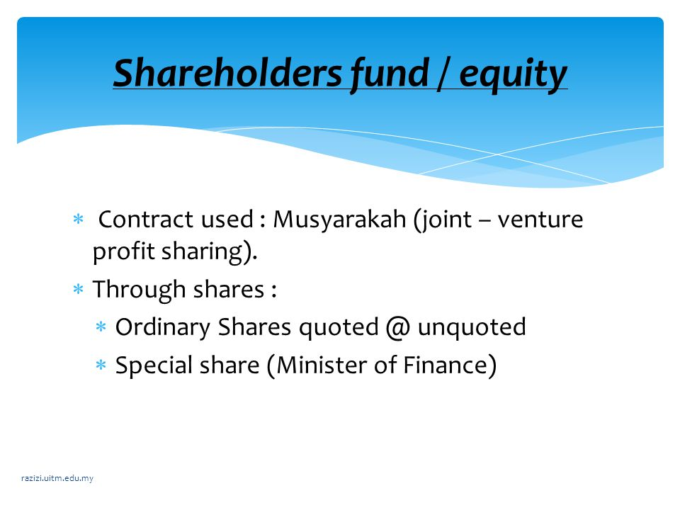 Shareholders fund / equity