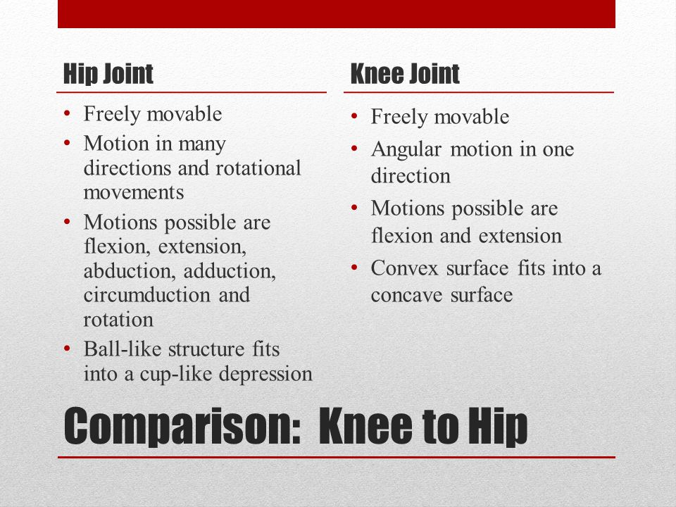 Comparison: Knee to Hip