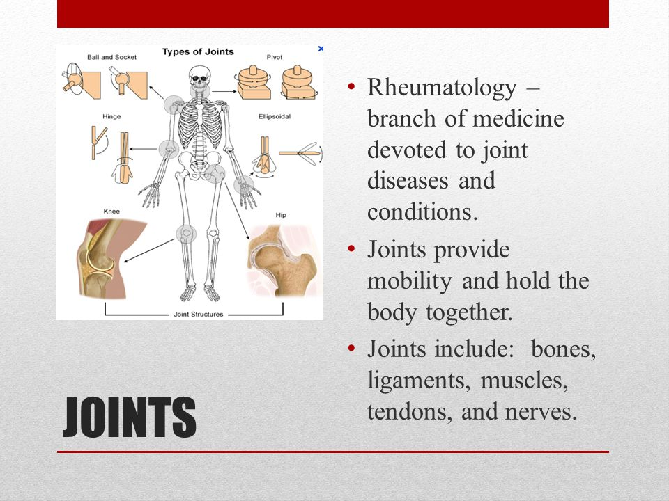 Rheumatology – branch of medicine devoted to joint diseases and conditions.