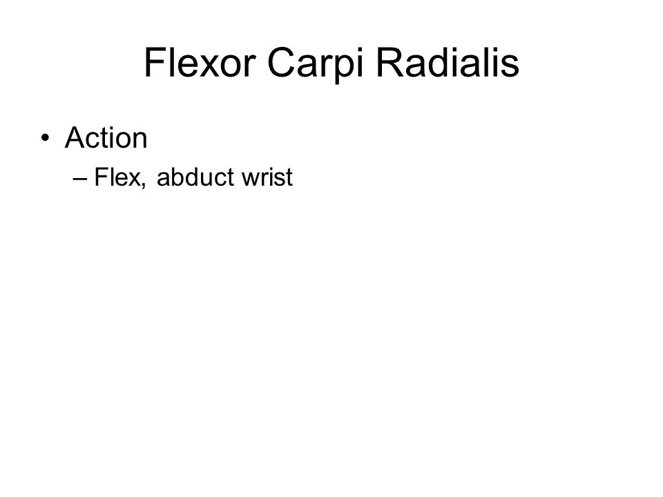 Flexor Carpi Radialis Action Flex, abduct wrist