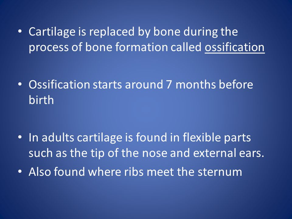 Cartilage is replaced by bone during the process of bone formation called ossification