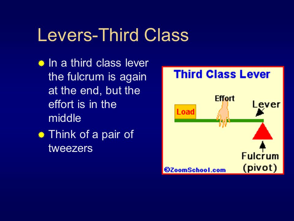 Levers-Third Class In a third class lever the fulcrum is again at the end, but the effort is in the middle.