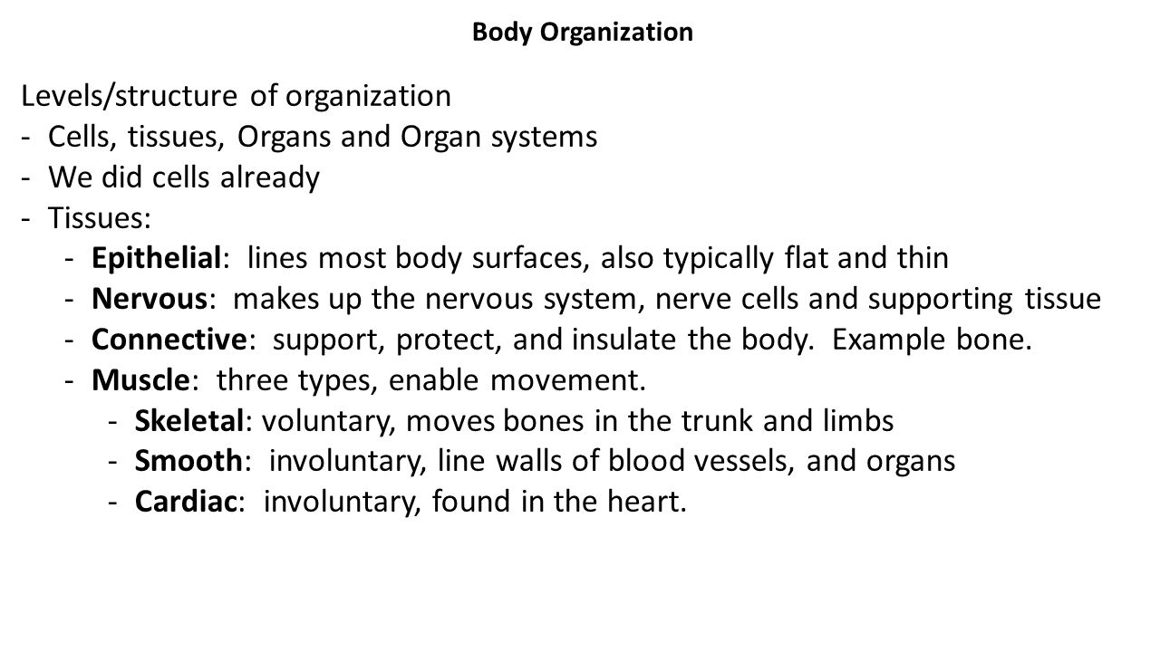 Levels/structure of organization