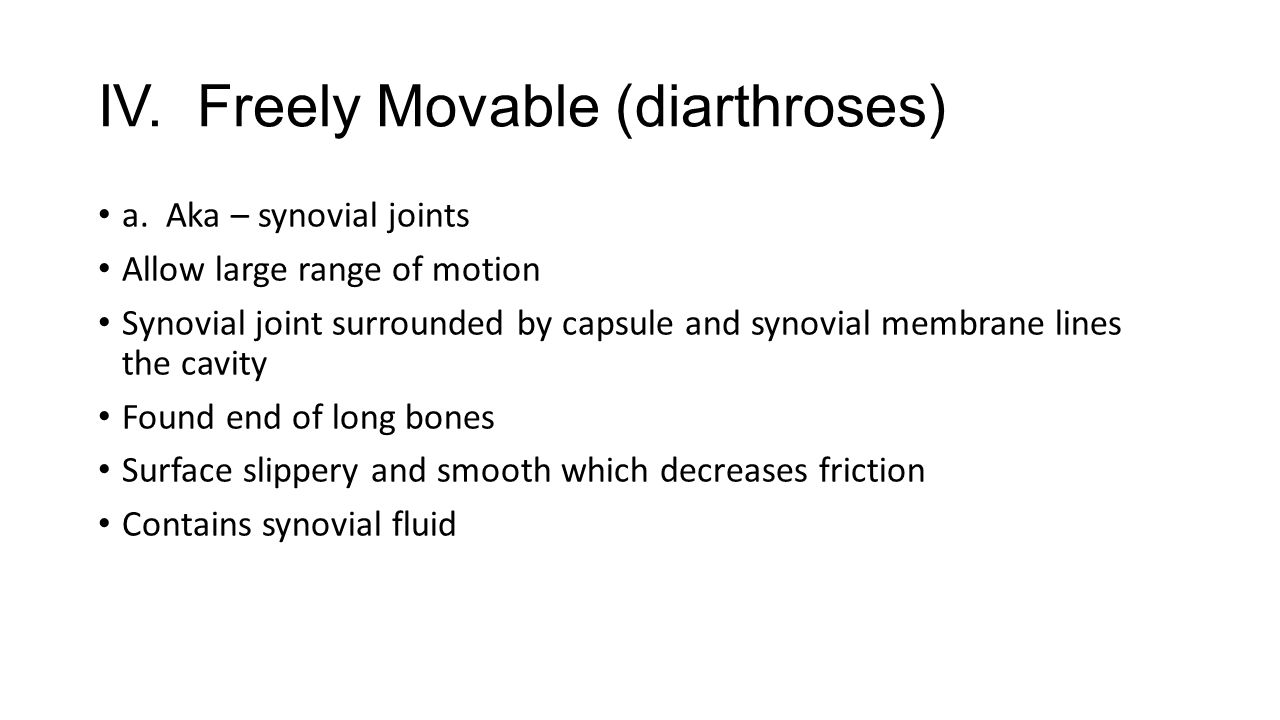 IV. Freely Movable (diarthroses)