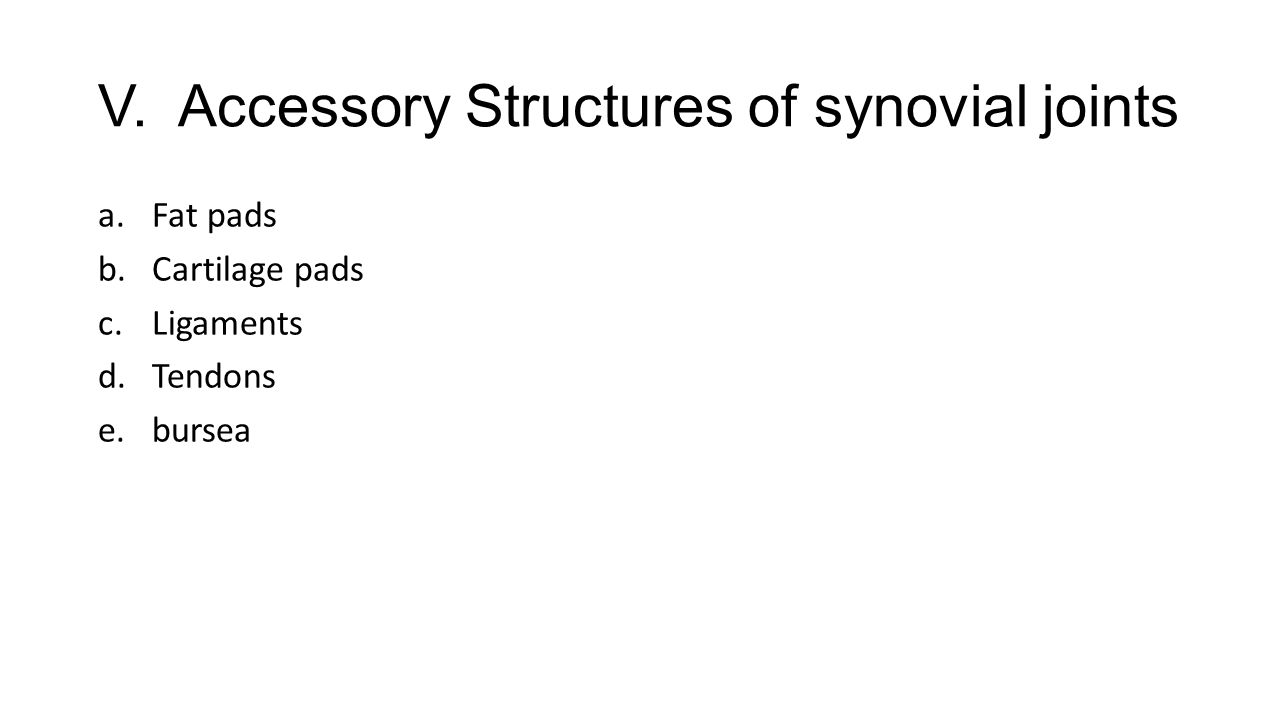 V. Accessory Structures of synovial joints