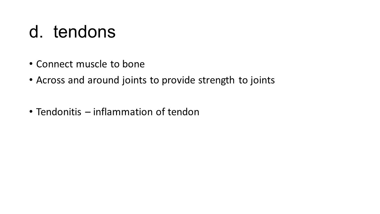 d. tendons Connect muscle to bone