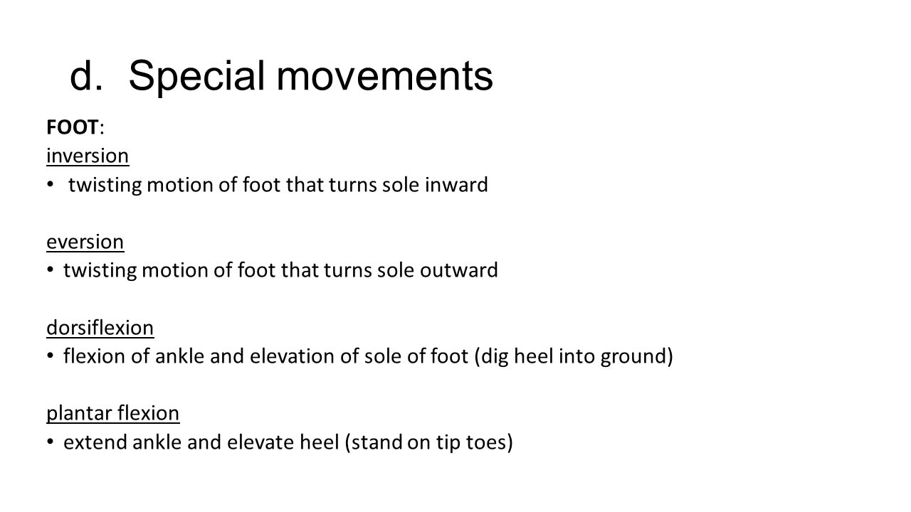 d. Special movements FOOT: inversion