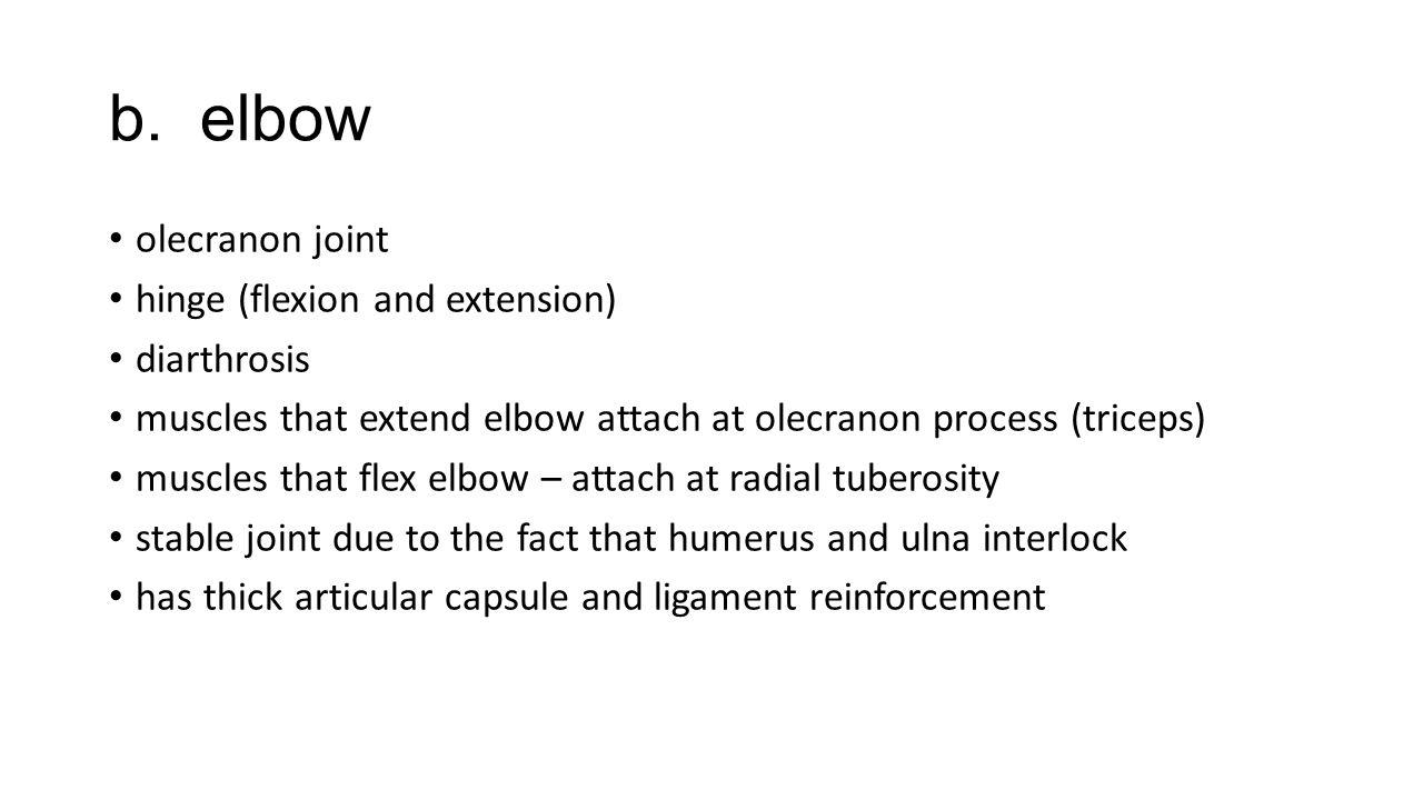 b. elbow olecranon joint hinge (flexion and extension) diarthrosis