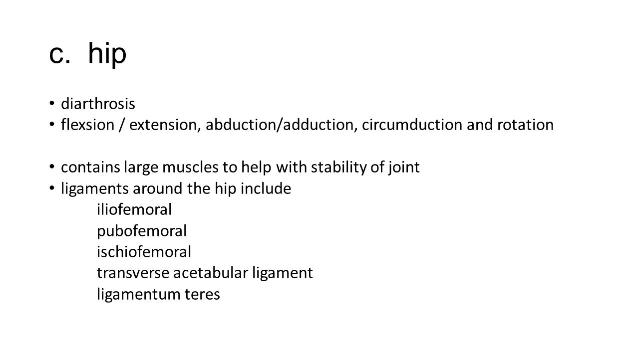 c. hip diarthrosis. flexsion / extension, abduction/adduction, circumduction and rotation. contains large muscles to help with stability of joint.
