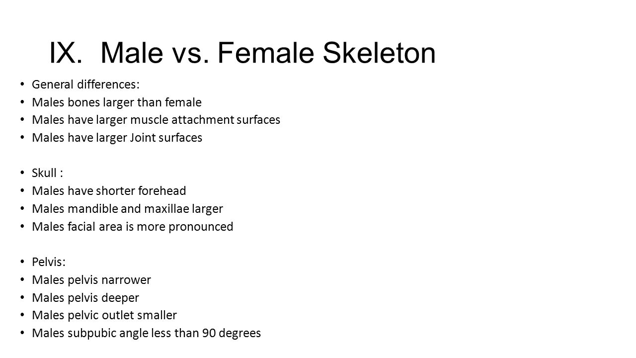 IX. Male vs. Female Skeleton