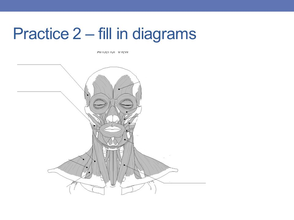 Practice 2 – fill in diagrams