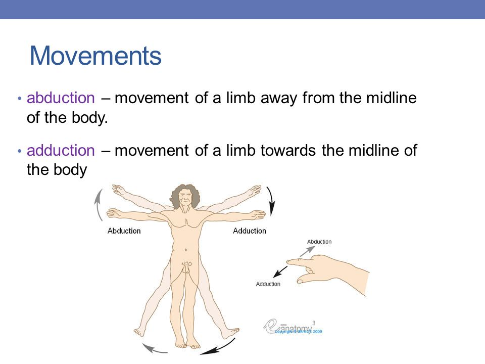 Movements abduction – movement of a limb away from the midline of the body. adduction – movement of a limb towards the midline of the body.
