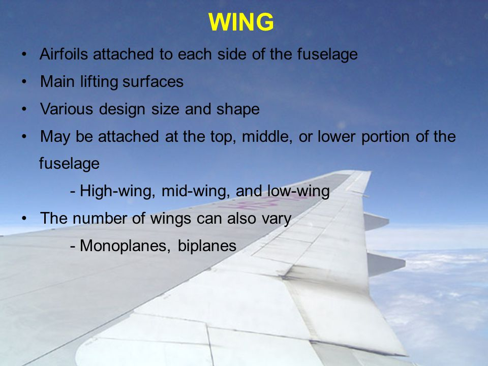 WING Airfoils attached to each side of the fuselage