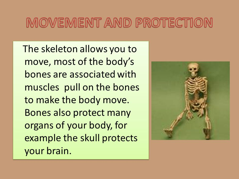 MOVEMENT AND PROTECTION