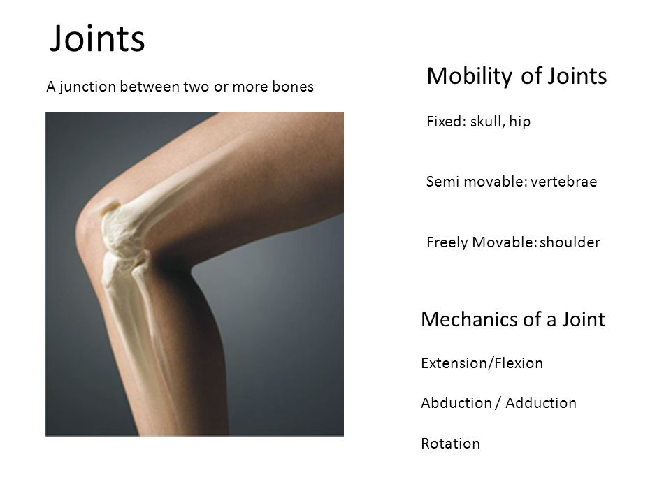 Joints Mobility of Joints Mechanics of a Joint